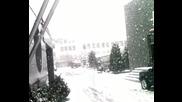 Snegovalesh Vav Haskovo
