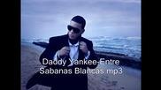 Daddy Yankee - Entre Sabanas Blancas