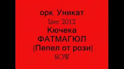 ork. Unikat kenan-kiucheka Fatmagiul [pepel ot rozi] Live 2012 Now