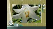 С цветя на кафе