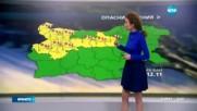 Прогноза за времето (12.11.2016 - обедна емисия)