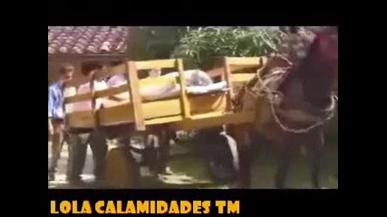 Lola Calamidades - piloto de la novela