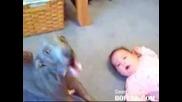 Куче И Бебе Си Говорят Смях