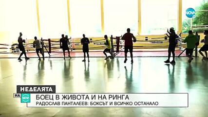 БОЕЦ И В ЖИВОТА, И НА РИНГА: Радослав Панталеев за бокса и всичко останало