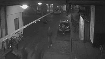 Germany: Police release CCTV footage of attack on of AfD politician Magnitz