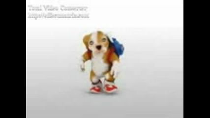 куче пее - Shakarron!! :D