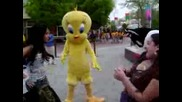 Dance Wit Tweety And Sylvester