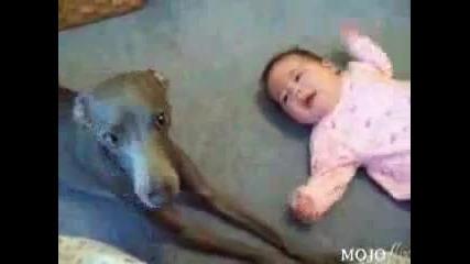 Куче и дете плачат