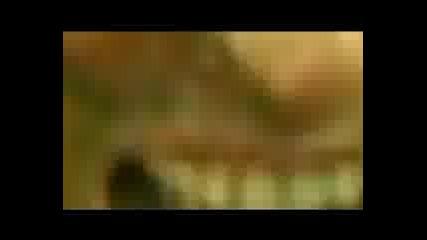 Deqn Nedelchev - Durtaka Official Music Video 2010