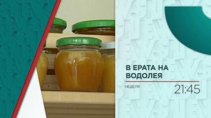 """Интернет на пчелите: Пазители на бъдеще - тази неделя """"В ерата на водолея"""""""