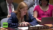 UN: Security Council votes in favour of Iran nuclear deal