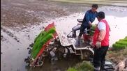 Машина за засаждане на ориз