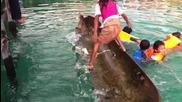 Малко момиче показва бърз начин, изважда наводнено кану само с краката си !