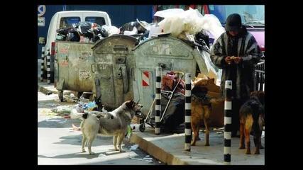 Подуене Блус Бенд - Кучето на крайния квартал (1992)