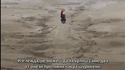 Naruto Shippuuden 168 [bg Sub] Високо Качество