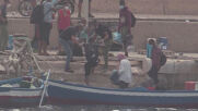 Italy: Migrant boat towed into Lampedusa port as arrivals hit record high