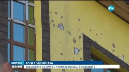 Отнесени покриви и изпочупени автомобили след градушка в Кирково