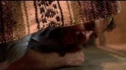 Prison Break _ Бягство от затвора (2008) S03e07 Bg Audio » Tv-seriali.com Онлайн сериали за всеки вк