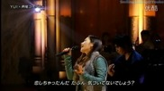 yui - cherry boss nova 2012