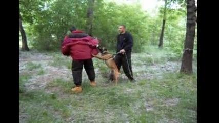 Обучение куче Защита 2
