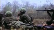 винтовки M-14,ar-15 и M-16
