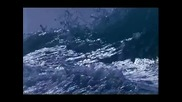 Relaxation To Nature Video - Deep Blue Opening With Dolphins And Surf