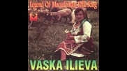 Vaska Ilieva - Stojan zapravil vodenica