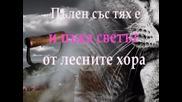 Мъчен Човек - Дамян Дамянов