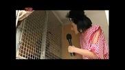 Мария Силвестър в цирка - смях в Токшоу на токчета