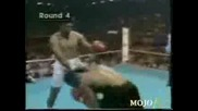 2pac The Uppercut Tyson Best Knockouts