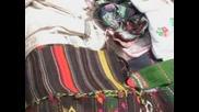 Картини и звуци от Родопите - Цветовете на Родопите - 2