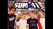 Sum 41 - King Of The Contradiction