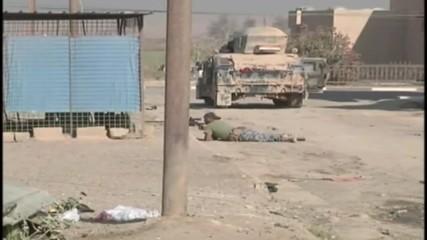 Iraq: Iraqi forces liberate Hammam al-Alil, south east of Mosul