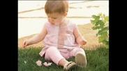 Сладки Бебенца - целият