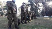 Chile: Canine brigade train pooches ahead of military parade