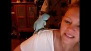 Бъбрив папагал флиртува със стопанката си иска целувка