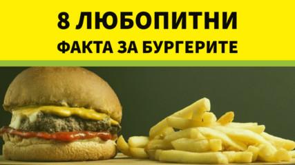 8 любопитни факта за бургерите