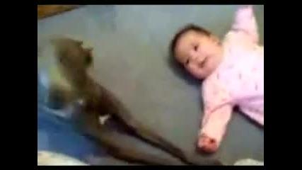 не плачи бебчо