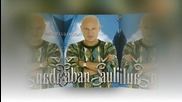 Saban Saulic - Privlacis me - Prevod