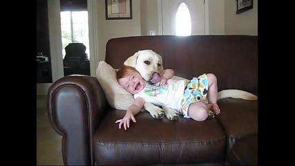 Бебе и куче - приятели завинаги
