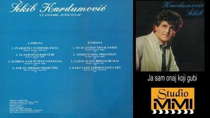 Sekib Kardumovic i Juzni Vetar - Ja sam onaj koji gubi (Audio 1984)