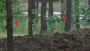 Lithuania: Holocaust escape tunnel discovered in Ponar forest
