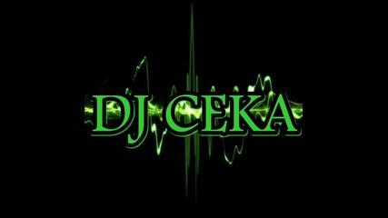 Много Добро!! Dj Ceka - House Mix 2013 { 16 }