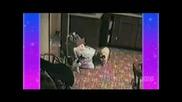 Луди Котки - Голям Смях