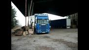 Scania 124l horn