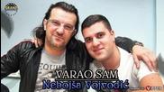Nebojsa Vojvodic - Varao sam (2012)