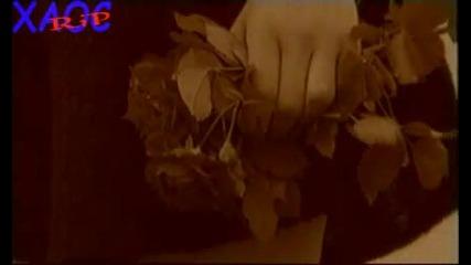 Радо Шишарката - бели птици (официално Видео)