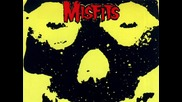 Misfits Teenager from Mars cover by Buck Onine