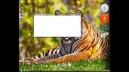 Как се маркира в Командния прозорец cmd [hq]