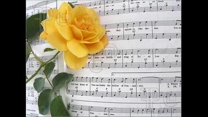 Michael Martin Murphey - The yellow rose of Texas (жълтата роза на Тексас)